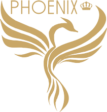 Phoenix - communication solutions -